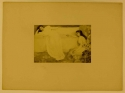 Symphony in White, No. 3, photograph, Goupil Album, 1892; GUL Whistler PH5/2